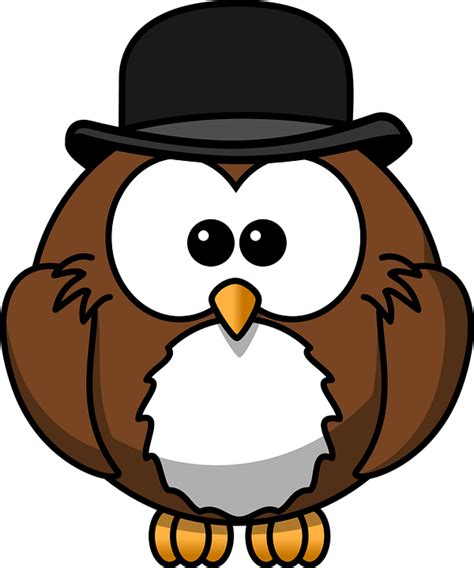 Cctv Burung Hantu gambar vektor gratis burung hantu hewan burung gambar gratis di pixabay 158410