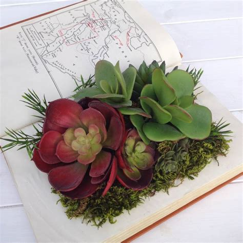 Succulent Book Planter by Deluxe Edition Succulents In Vintage Book Planter By Beaux