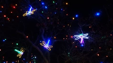 when does zoo lights start denver zoo lights 2013 undefeated
