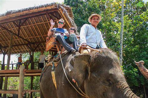 bali elephant ride tour bali day tour elephant ride bali ubud tour