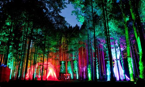 best festivals for 10 best us festivals of 2013 10 electric forest