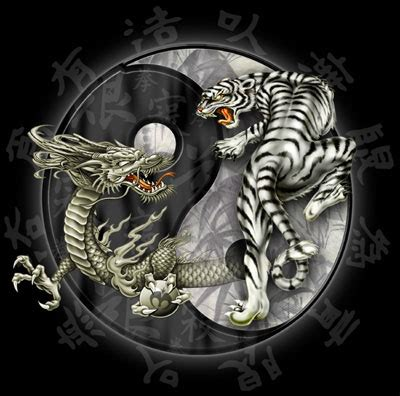 tattoo dragon tiger meaning all fun 143 dragon tiger tattoo