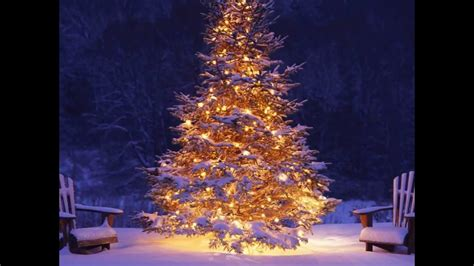 merry  christmas maysa smooth jazz family youtube
