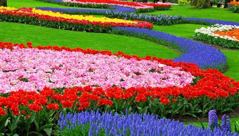 size of garden ideas backyard design small flower