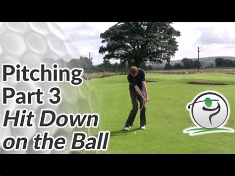 golf swing hitting down on the ball how to hit golf pitch shots hit down on the golf ball