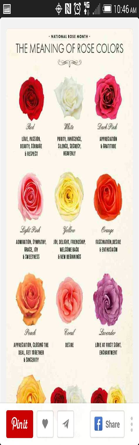 meanings of colors of roses the meaning of colors musely