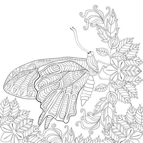 coloring pages butterfly garden butterfly garden beautiful butterflies and flowers