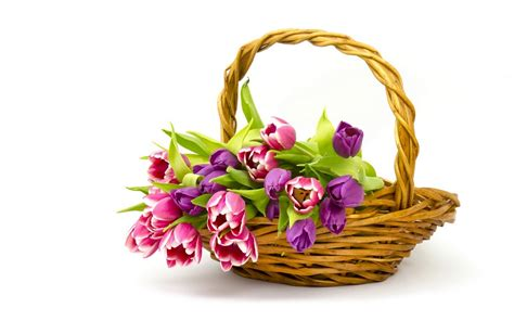 flowers basket wallpapers hd pictures one hd wallpaper pictures backgrounds free download