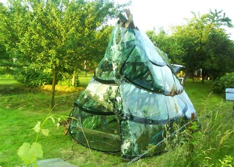 Recycled Windshield Greenhouse Grows More Glass