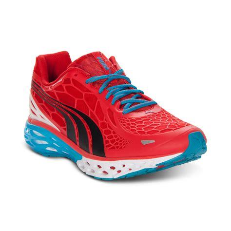 elite sneakers bioweb elite sneakers in for scarlet