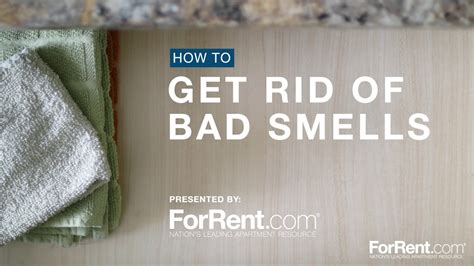 How To Get Rid Of Bad Odor In House | how to get rid of bad smells youtube