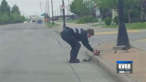 west fargo cso helping creatures great and small