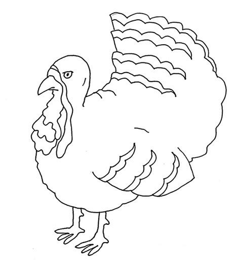 turkey bird coloring page thanksgiving coloring pages