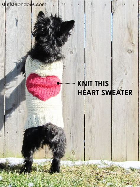 knitting pattern puppy jumper 60 best images about knitted dog sweater patterns on