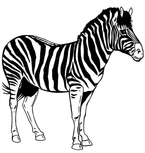 zebra template printable printable stencil template 35 free jpeg png pdf