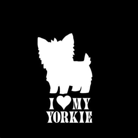 my yorkies i my yorkie 2 car window decal sticker 5 quot it s a yorkie