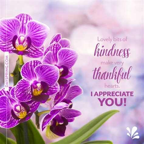 i appreciate you card template thank you ecards dayspring greetings