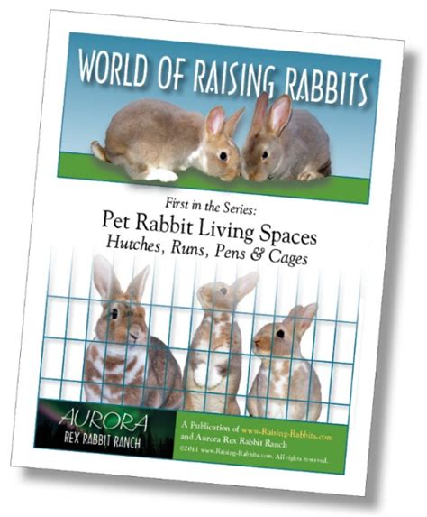 Raising A Cat Planner Box Set Buku Planner Buku Catatan Murah indoor rabbit cage how to set up your indoor rabbit hutch and cage