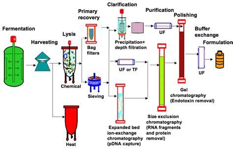 flow sheet diagram clinical trial flow diagram wiring diagram