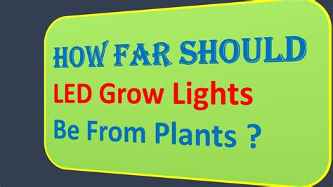 how far should led grow lights be from plants how far should led grow lights be from plants