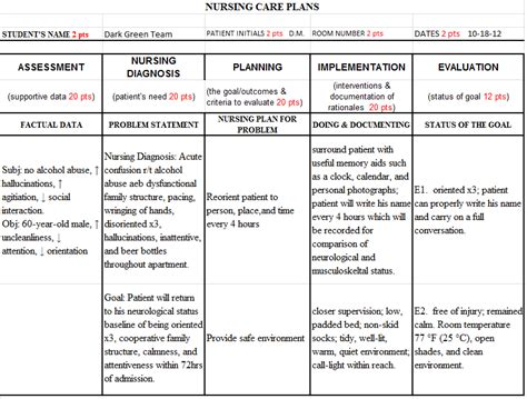 nursing student care plan exles