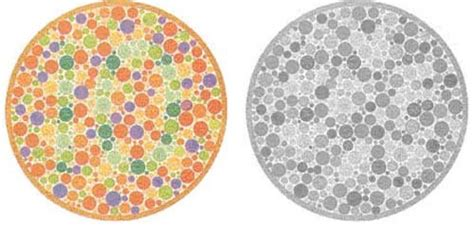 black and white color blind color blindness test ultimate edition