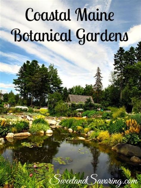 Mid Coast Botanical Gardens Maine 17 Best Images About Travel On Lobsters Acadia National Park And Bar