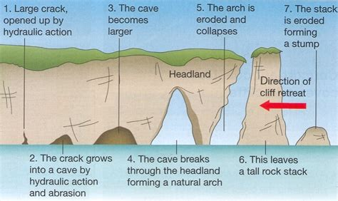 parts of a cave diagram coasts of erosion and coast of deposition the