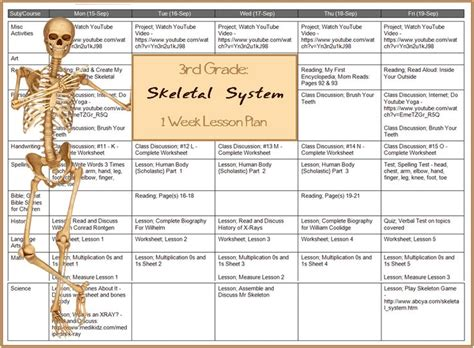 Section 36 1 The Skeletal System Answers by 100 Skeletal System Worksheet Answers Skeletal