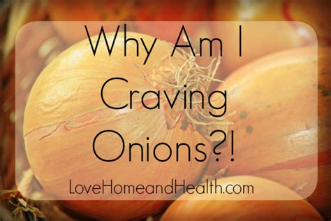 why cant dogs onions why do i crave it could be your liver home and health