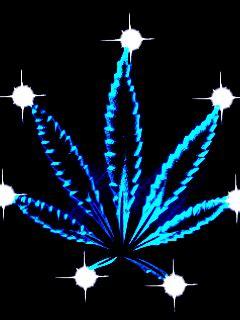 imagenes de marihuana chidas imagenes de calaveras con marihuana gif holidays oo