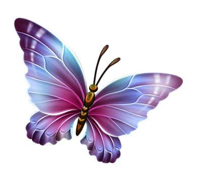 butterfly purple and blue transparent free images at