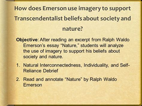 themes of the essay nature by emerson essay on animal rights research paper on animal rights