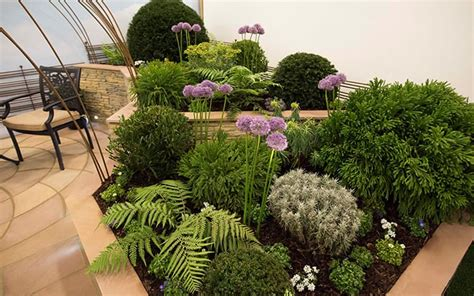 contemporary garden planting schemes gardeners of the year 2016 chichester college