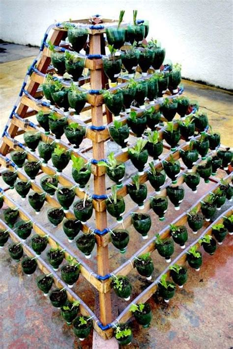 Watering Vertical Gardens Salad Vertical Garden 1001 Gardens