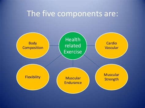 all worksheets 187 5 components of health related fitness