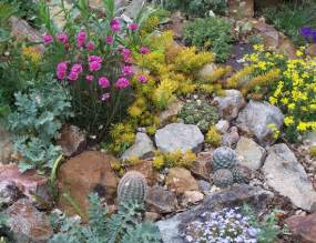 Rock Garden Plants A Rebel With A Cactus An With Leo Chance Timber Press