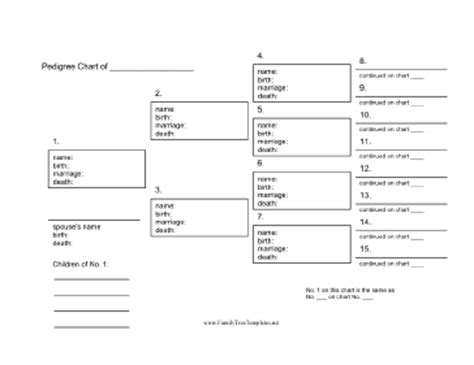 free pedigree chart template blank family tree diagram blank free engine image for