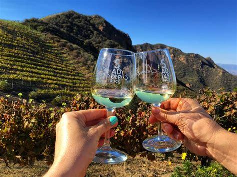 malibu and wine the quot quot giraffe picture of malibu wine safaris