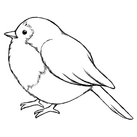 pattern drawing bird pinterest discover and save creative ideas