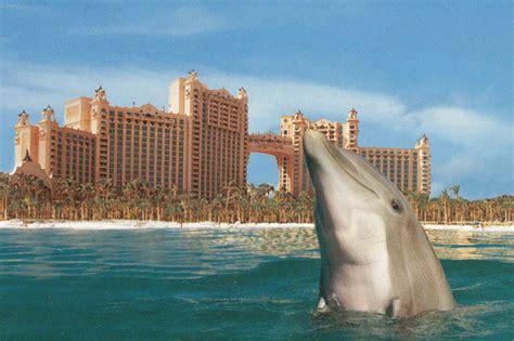 hotel atlantis atlantis hotel paradise island bahamas maria teimurazova