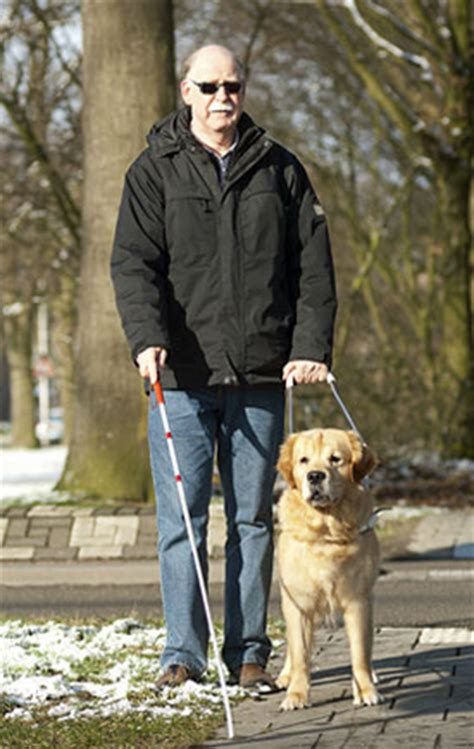 how to your to be a service animal national service animal registry