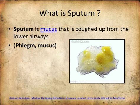 color of sputum use of sputum sle for diagnosis of disease