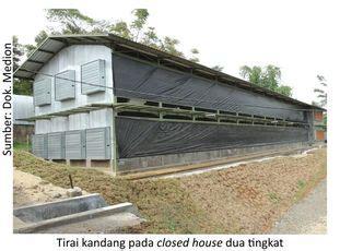 Tirai Kandang Broiler info medion closed house solusi peningkatan performa ayam