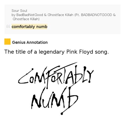 comfortably numb meaning comfortably numb sour soul by badbadnotgood ghostface