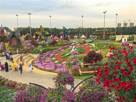 Dubai Miracle Garden: Must Visit Place in Dubai   Anna