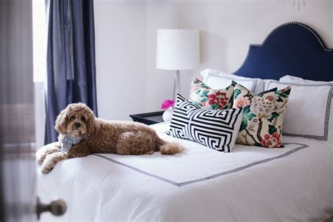 White Comforter With Blue Trim by Navy Blue Headboard Bedroom