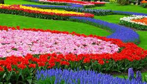 Flower In Garden Pictures Flower Garden Landscape Design Garden Post