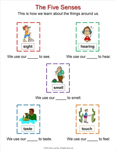 Five Senses Worksheets by Nonna And Me The Five Senses Learning About Our World