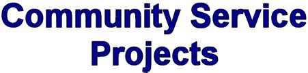 One Community Service Project Seemed sigma tau gamma phi chapter community service projects 2003
